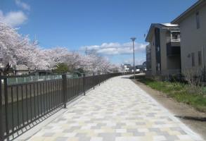 松並木土地区画整理事業 広瀬川河畔道路整備工事