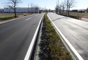 補助公共社会資本総合整備(防災・安全)(地方道舗装)舗装修繕工事