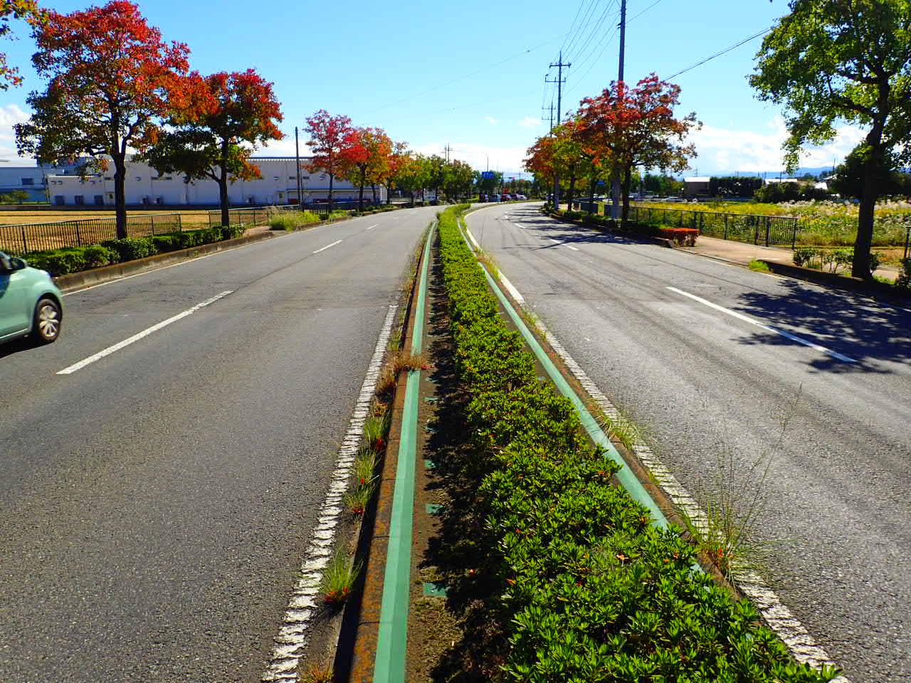 補助公共社会資本総合整備(防災・安全)(地方道舗装)舗装修繕工事 施工前